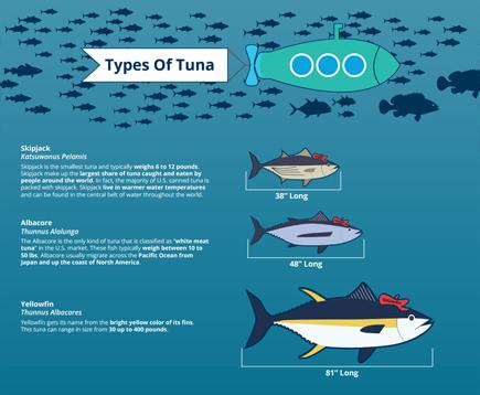 Seafood Facts